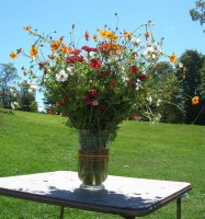 image of vase with brightly colored flowers