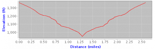 Elevation map of walking route
